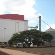 JBS Big Frango - Brazil