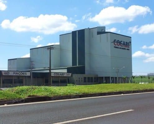 Cocari Mandaguari PR - Brazil