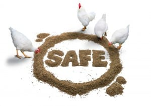 Feed Safety